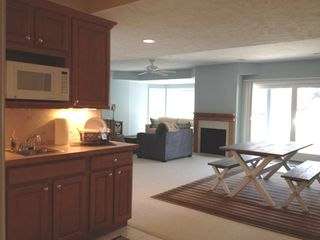 Manistee condo photo - Lower level living area with kitchenette