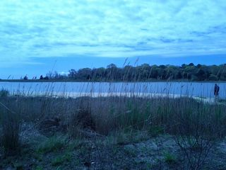 Mastic Beach house photo - osprey park .. sandy cove. 1 short block from house. Swimming is not permitted
