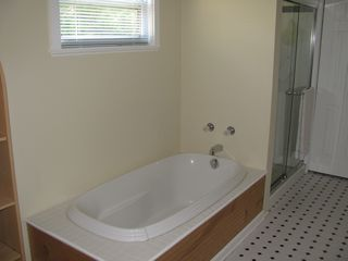 Land O Lakes house photo - Master Bath tub