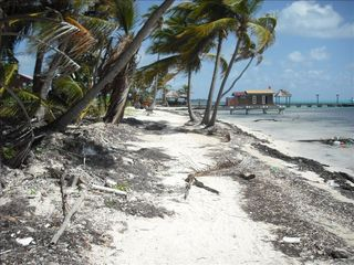 Ambergris Caye house photo - Headed north for a walk on the beach
