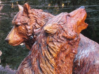 Close up of the Wolves