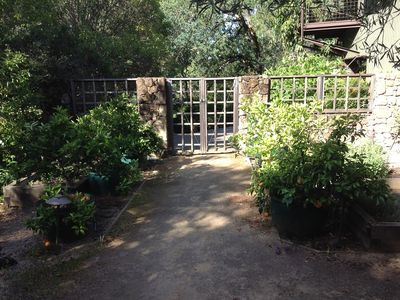 Entry to back yard and vegetable garden