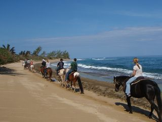 Isabela house photo - Horseback riding on the beach with Tropical Trail Rides.