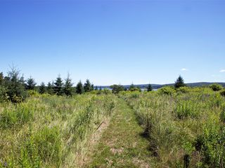 Annapolis Valley house photo - Hike along your private trail that leads from the house to the shore.
