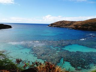 Honolulu house photo - The famous Hanauma Bay is 5 mins frm our home. Best snorkeling on Oahu