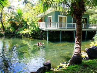 Pahoa cottage photo - Couple enjoying the pond behind Tiki Hut