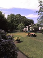 Vineyard Haven condo photo - Picnic area and grounds