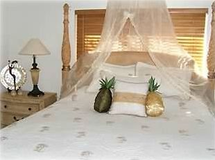 Master Suite (silky netting for decoration only)
