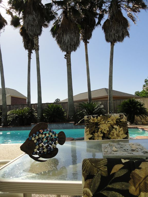 Huge Palm Trees By The Pool
