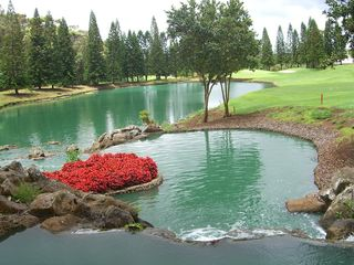 Maalaea condo photo - Golf Course
