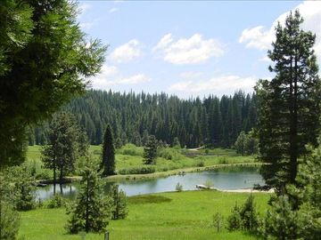 Pinecrest cabin rental - View of private pond from Deck