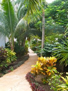 Puerto Morelos condo rental - Front Walkway with well tended garden.