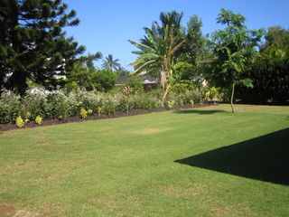 Princeville house photo - Backyard