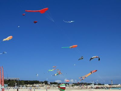 ...DURING THE KITE FESTIVAL, JUST ONE OF THE.....