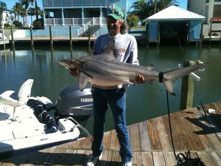 Rockport house photo - Black Tip Shark is whats for dinner! Home is where you drop your line...FISH ON!