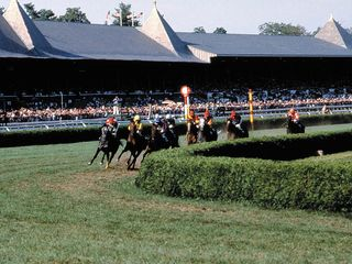 Saratoga Springs house photo - Ponies on the turf!