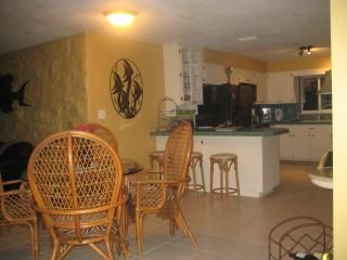 Palm Harbor house rental - dining and kitchen area