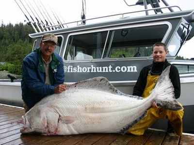 Awesome halibut caught on our charter boat!