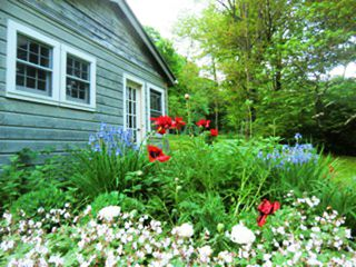 Great Barrington house photo - guest house and gardens
