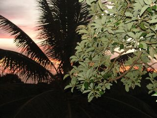 Aguadilla villa photo - Stunning sunset from the Casita!