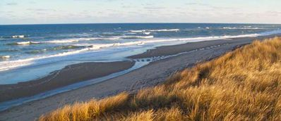 Just a mile away Cape Cod National Seashore protects our 4 Wellfleet ocean beach