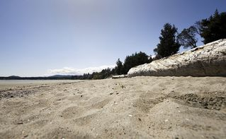 Parksville townhome photo - An easy 2 min. walk to Rathtrevor Beach