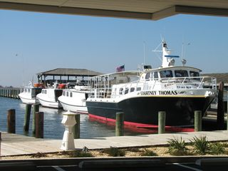 Crisfield condo photo - DOWNTOWN CITY DOCK