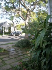 Santa Barbara bungalow photo - On a tree-lined street