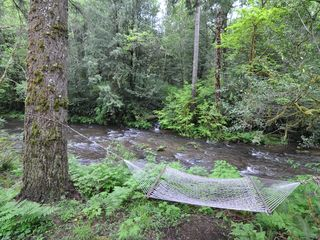 Coos Bay house photo - Hammock and babbling Glenn Creek