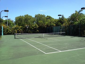 Private, lighted tennis court and basketball court. Surrounded by lush landscape
