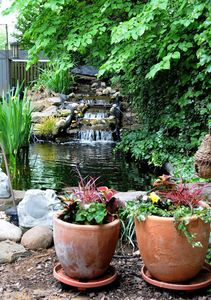 Waterfalls and koi pond in back yard