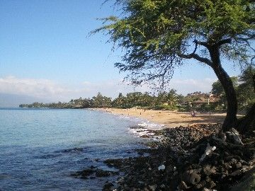 Kihei condo rental - kamaole beach one - just steps away!