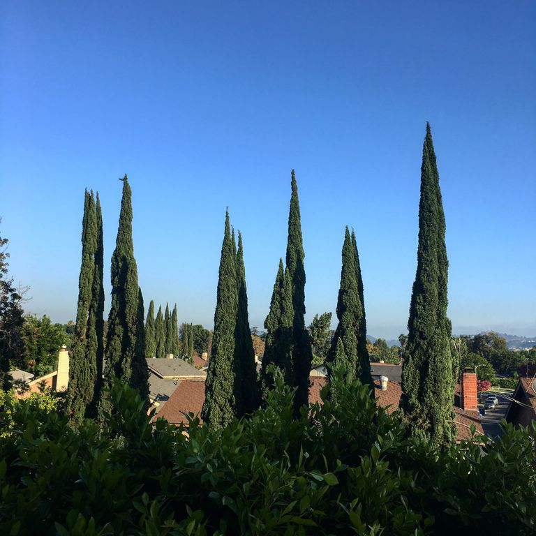 Charming Southern Ca Retreat Close To Everything, Near Los Angeles - Free Wi-fi