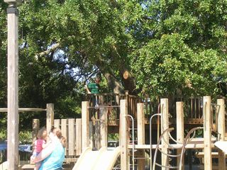 Palmetto Dunes villa photo - Playground