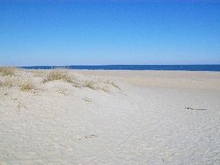 Virginia Beach house photo - The Widest, Whitest Sand Beach at VA Beach
