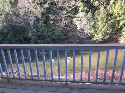Balcony view of Little River