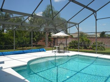 A view of the citrus trees and the pool
