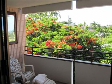 Keauhou condo rental - Sit on the lanai, listen to the birds in the trees.
