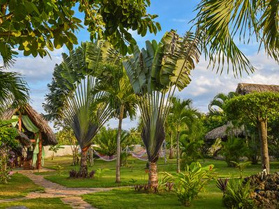 reception and tropical garden at Chalet Tropical Village