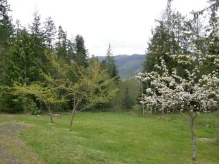 Sequim lodge photo - Spring View