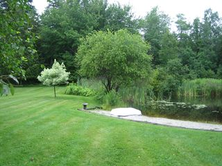 Sedgwick house photo - pond