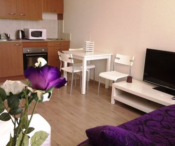 Apartments for Rent in Haifa