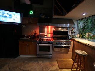 Philadelphia estate photo - Tiki Bar Kitchen w gas grill - watch the game and serve burgers at the Swim bar!