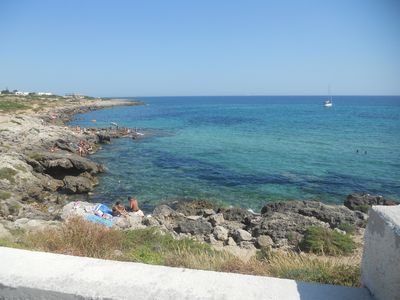 Ideal for families, groups of friends, animal lovers, the sea and the green