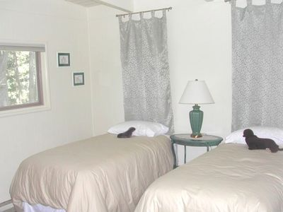 Twin beds in forest view room