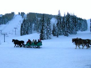 Durango condo photo - Dashing through the snow .... sleigh rides on the Mountain !