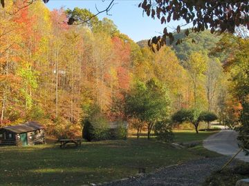 A view from Joey's Creekside cabin in the autumn