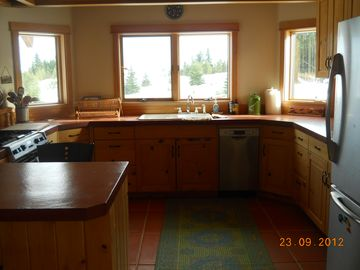 Kitchen, open plan with stainless appliances, concrete countertops, VIEW!