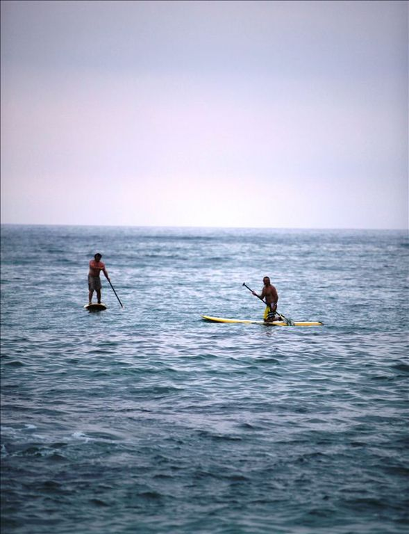 Hoe He'e Nalu - Stand Up Paddling in front of home.