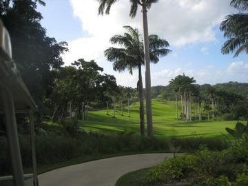 Fancy a round . Apes Hill Golf Course Barbados